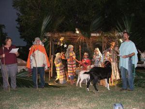 Nativity 2012 011