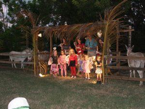 Nativity 2013 003