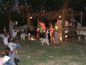 Nativity 2013 007