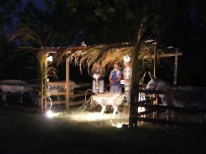 Nativity 2013 010